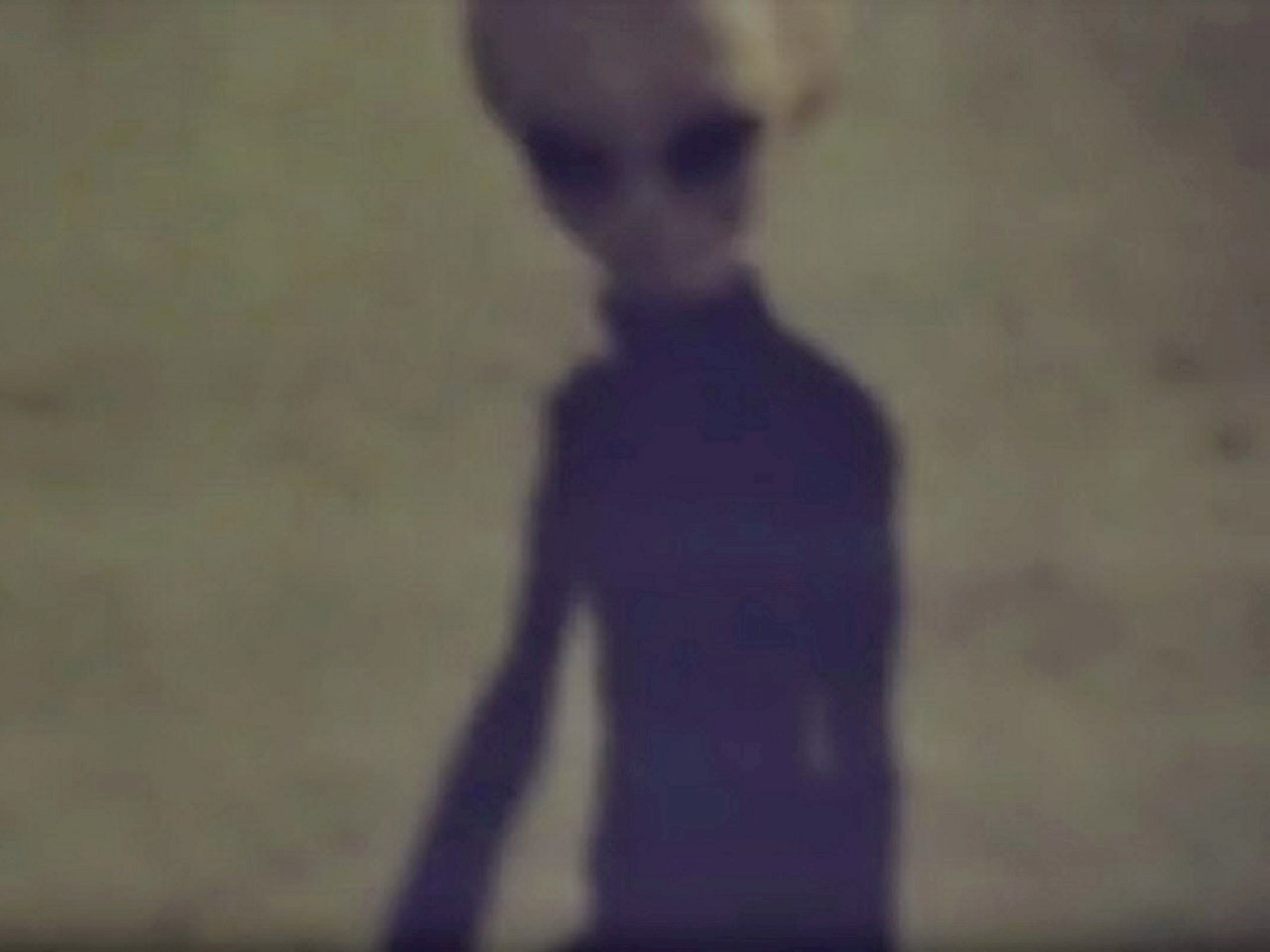 Grey aliens in 1942 during a series of diplomatic visits