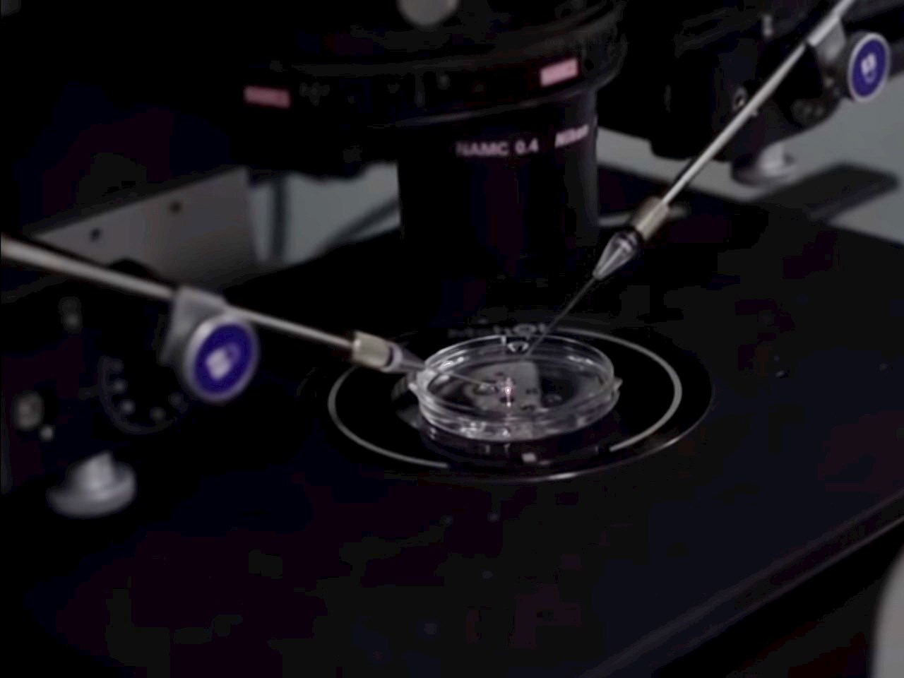 First gene-edited babies reported in China